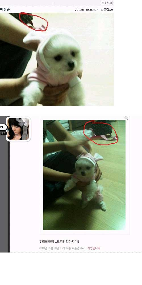 Park gyuri dating rumor 3