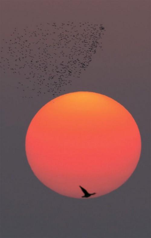 Sunrise_20110101